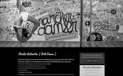 Cours de pole dance a Saint Julien en Genevois – Ecole de pole dance a Saint Julien en Genevois – Cours de pole dance a Geneve – Studio Pole Dance
